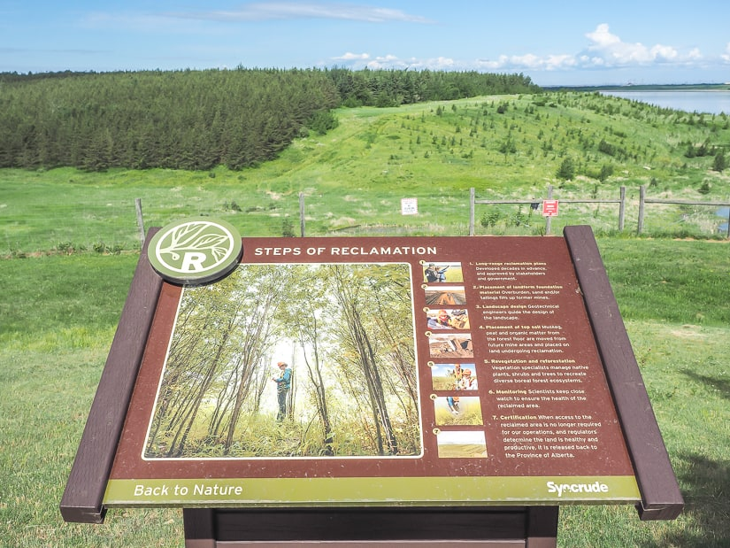 Bison Lookout, a Syncrude Reclamation Site