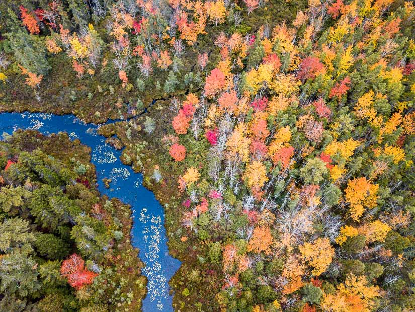 View from above of Acadia National Park in Autumn
