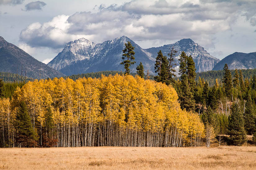 Stunning autumn colors in Glacier National Park USA