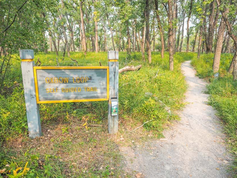 Oxbow Loop Interpretive Trail, Helen Schuler Nature Reserver, Lethbridge