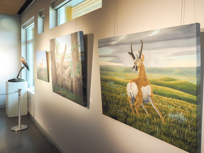 Artwork and animal displays inside Helen Schuler Nature Reserve