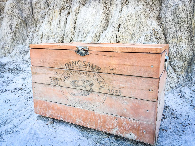 Box of equipment for guided tour of Dinosaur Provincial Park