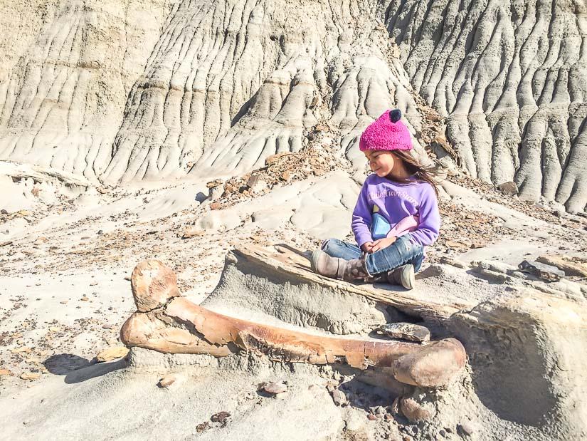 A girl sitting beside of real dinosaur leg bone on a Dinosaur Provincial Park Interpretive tour