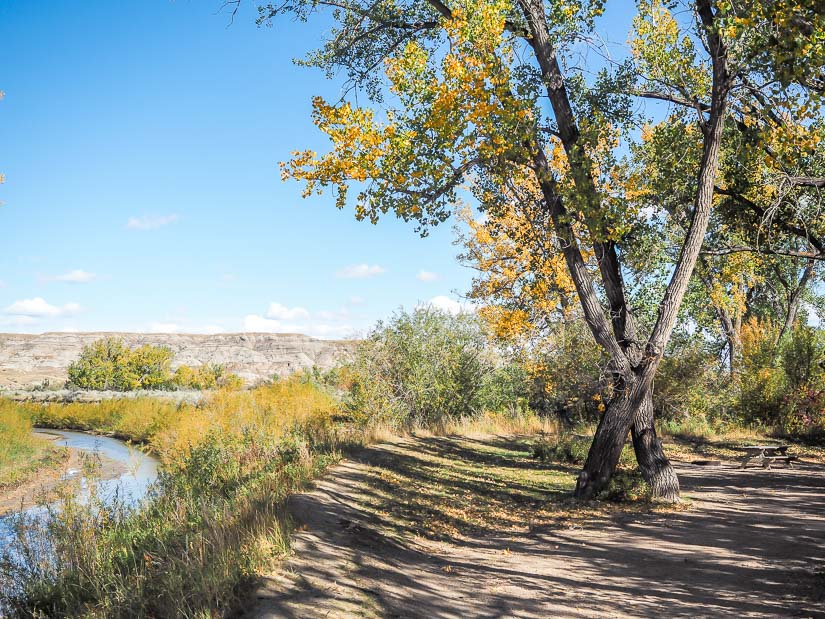 Campsite overlooking a creek at Dinosaur Provincial Park campground