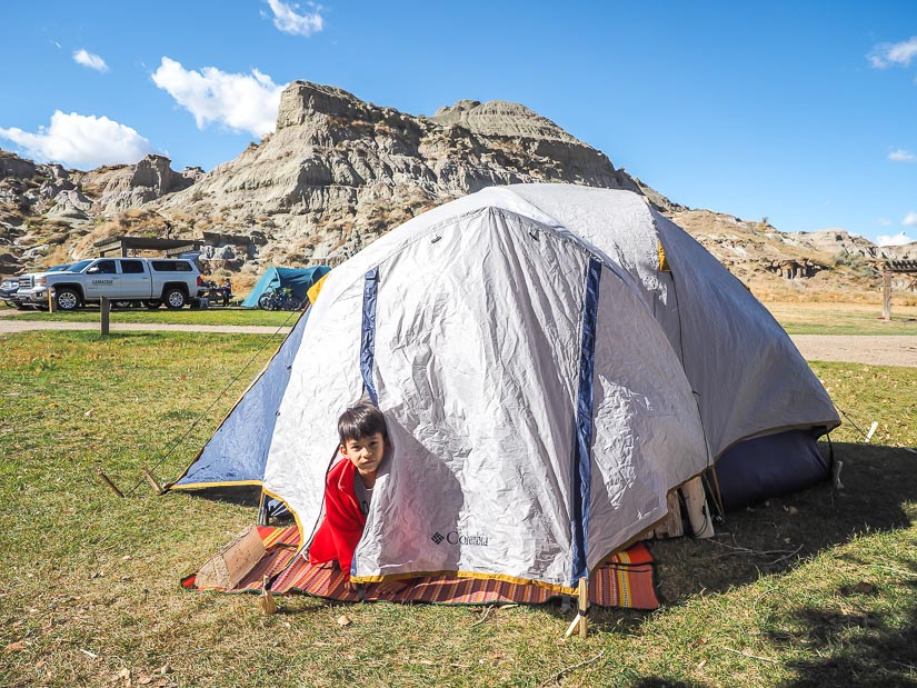 Boy looking out of a tent in Dinosaur Provincial Park campsite