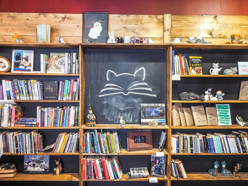 Inside the Page & Whisker used bookstore in Medicine Hat