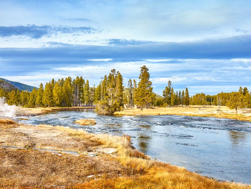 Beautiful fall colors in Yellowstone National Park, America