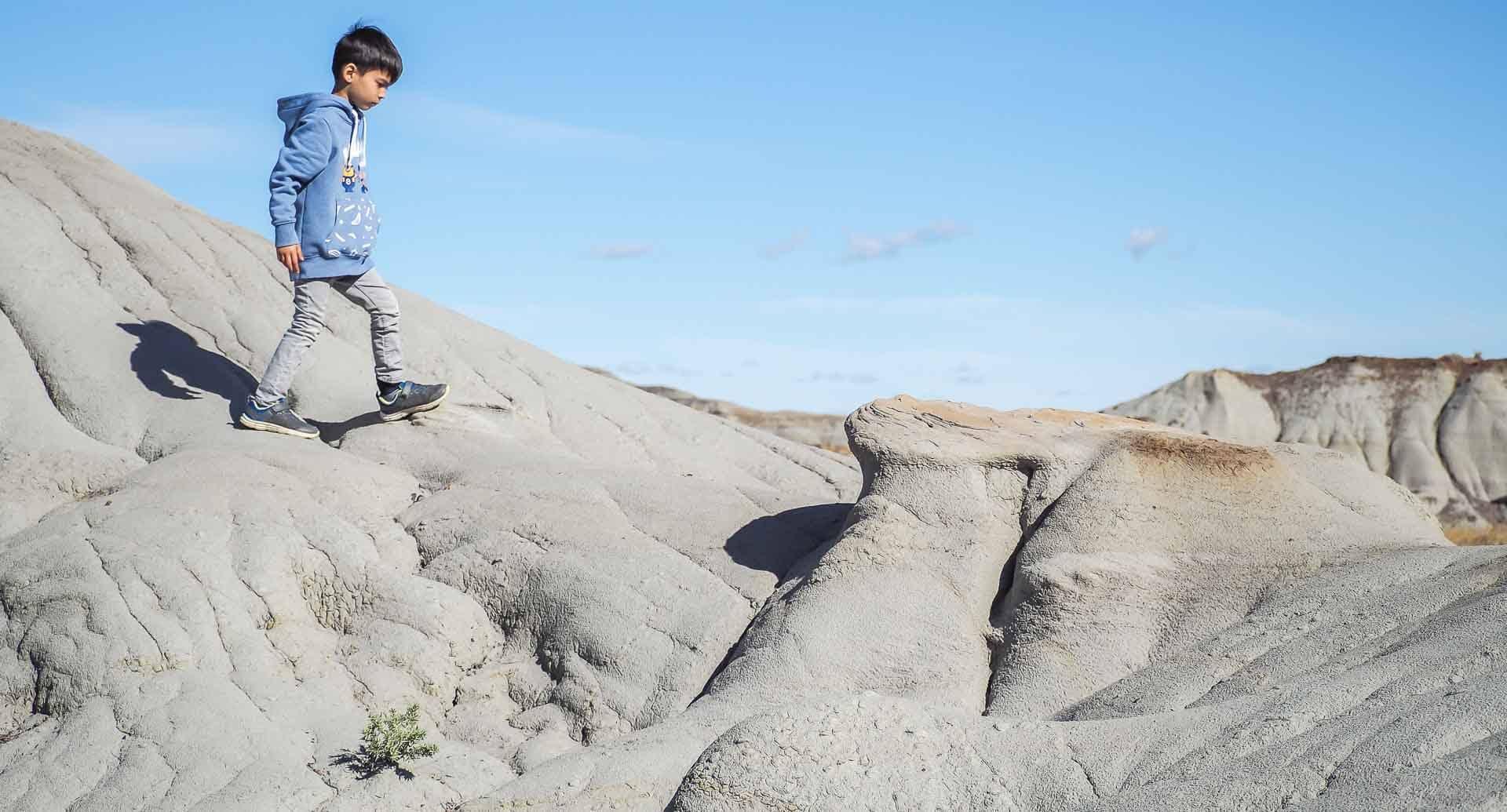 The best dinosaur provincial park tour and dinosaur provincial park hikes