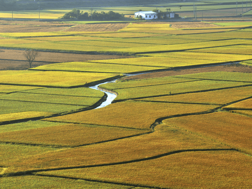Agricultural land in Fenglin (Fonglin) Hualien