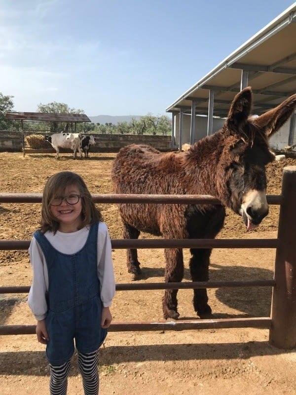 Kid on a farm in Puglia