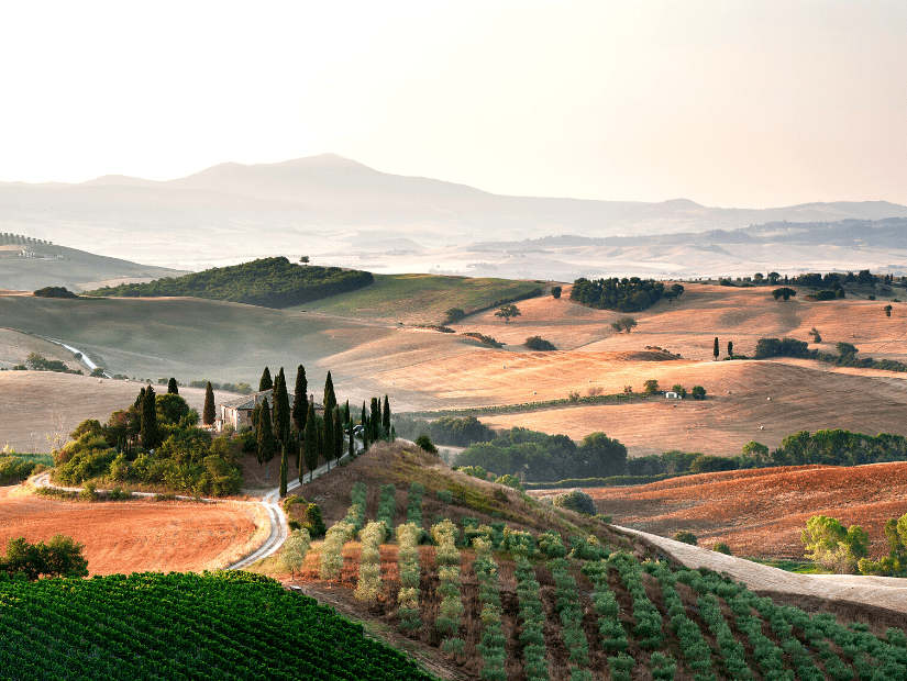 Fields in San Quirico d'Orcia, Tuscany, Italy
