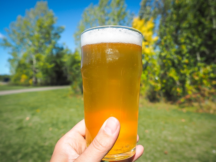 A hand holding up a pint of beer, which you can legally drink in some Edmonton parks