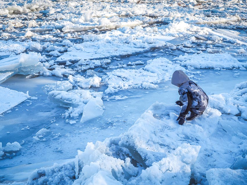 A kid looking at frozen chunks of ice on the river in Edmonton